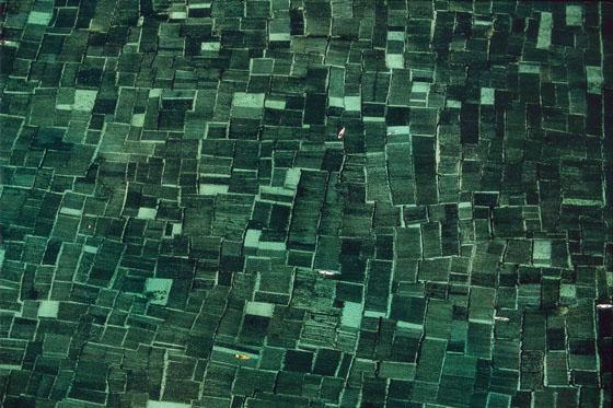 la terra vista dall'alto EXPO_TVDC_029
