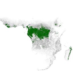 UMD/GLAD/PRIMARY_HUMID_TROPICAL_FORESTS/v1