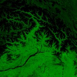 NOAA/VIIRS/001/VNP13A1