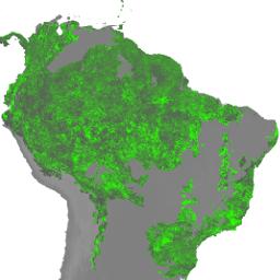 WRI/GFW/FORMA/vegetation_tstats